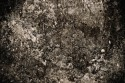 4058647-abstract-background-dark-grunge-texture-on-the-wall2