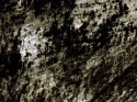 royalty-free-images-dark-grungy-textures1